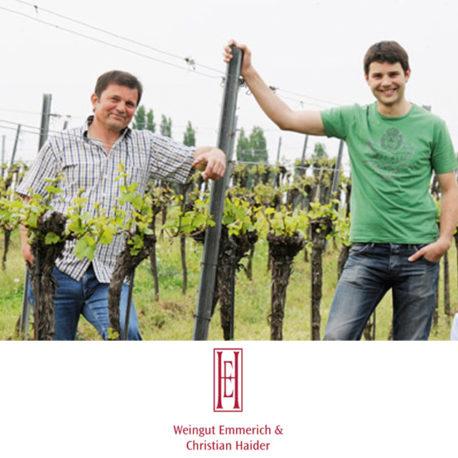 07. Weingut E&C Haider