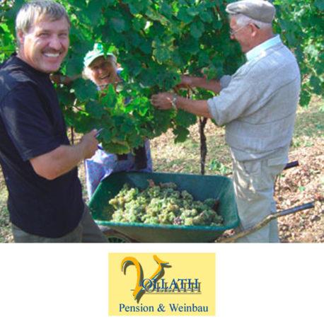 19. Weinbau Vollath